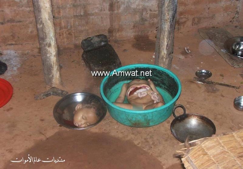 صور مقززة ومرعبة لام تاكل ابنها  1176_800x600