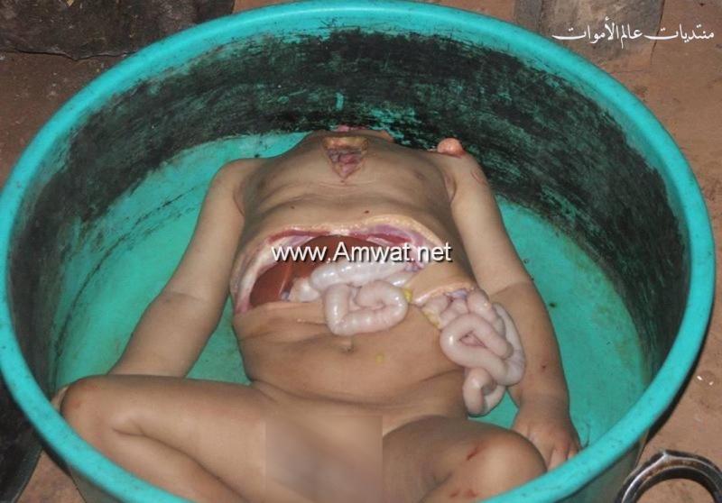 صور مقززة ومرعبة لام تاكل ابنها  3124_800x600